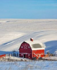An Old Red barn Graces This Snowy, Rural Scene Near Mount Horeb, Wisconsin...