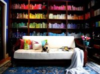 Color-Coordinated Bookshelves