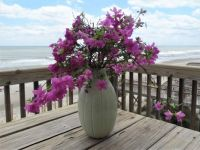 North Topsail Beach, NC