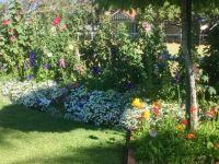Toowoomba, botanical gardens