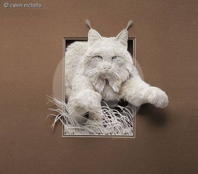 Paper Art, clever!