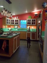 My Kitchen: Taken before I added the colorful rug; that's my doggie, Keno, she rules here.