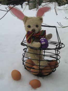 Growly,  umm, the Easter Bunny-Bear