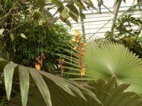 Botanická Troja