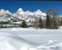 Winter in Grand Teton Natl. Park, Wyoming