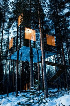 Mirrorcube Treehotel