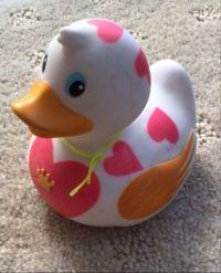 The original duck