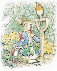 illustration from The Tale of Peter Rabbit by Beatrix Potter