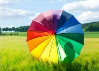 Rainbow ~ Umbrella Colour Wheel
