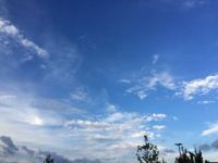 blue sky and clouds--medium