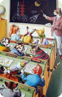 The Feline School