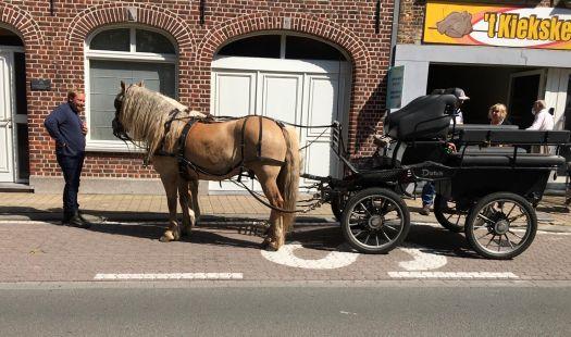 paard en koets