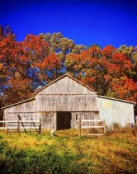 Barn in Autumn Eastern Tennessee