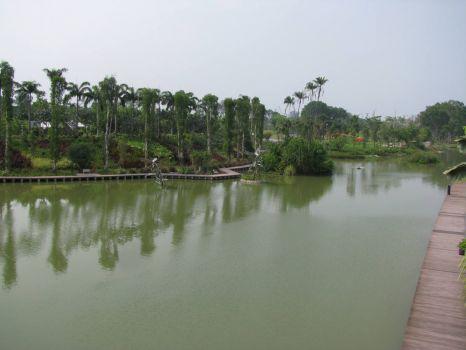 Dragonfly Lake in the Marina Bay Gardens - Singapore