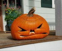A Sad Pumpkin