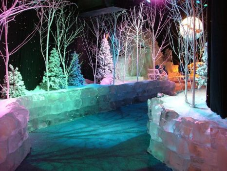THEME - winter - ice forest