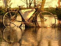 cycle reflected