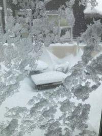 ice on the sliding glass doors