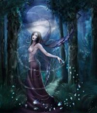 Fairy In The Moon Light