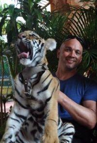 Orlando Tiger