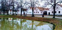 Holašovice s rybníkem