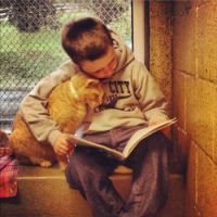 Reading to a shelter pal