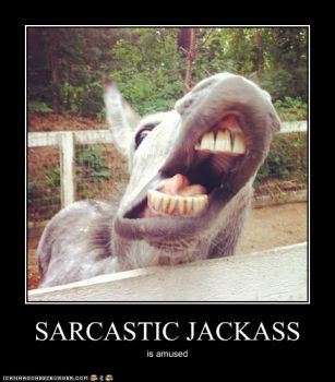 Sarcastic Jackass - must solve the puzzle to read the fine print.