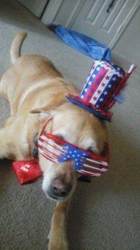 Jesse celebrating 4th of July