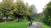 A walk, October 13. #2