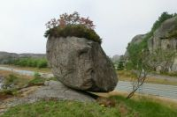 Big stone with hair