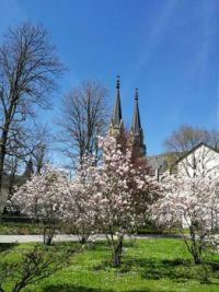 Stiftskirche Admont in Österreich
