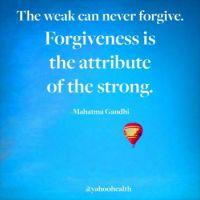 Wellness Wisdom 1