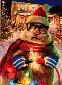 Extra merry, Extra bright - Merry Christmas Jidigiers!! :-))