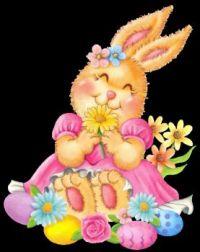 Frilly Bunny