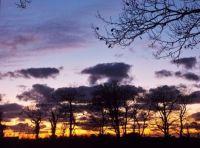 Contrasts in November Devon