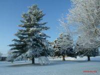 Saturday Morning snow.....