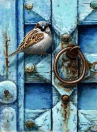 Wren on old blue door