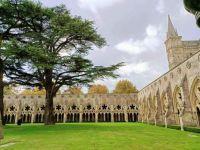 Salisbury Cathedral (3)