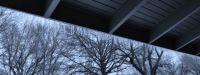 The Ice Storm Cometh