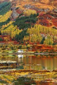 Autumn in Scotish Highlands