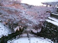 Kiyomizu_dera, Kyoto, Japan