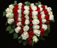 Roses of Heart