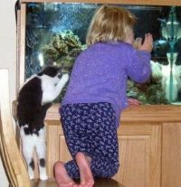 "GIRL-""OHHHH PRETTY FISH""   KITTY-""OHHHH YUMMY FISH""..."