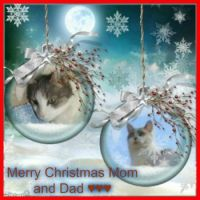 For you dear Janet ♥♥♥ Molly and Miffie for mom and dad