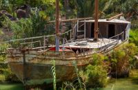 Jungle dry dock