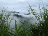 Mists in the Mountains, Lao PDR