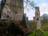 St. Patrick's Day at Blarney Castle