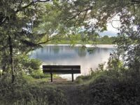 bench at Strawberry Lake