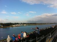 Waiting for the Rowing to Begin