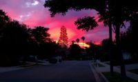 Beautiful Cali sunset